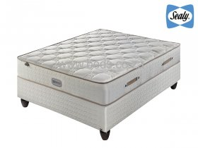 Sealy Posturepedic - Avignon Firm - Queen Size Bed - 188cm