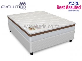 Rest Assured - Somerset NT- Queen Size Bed - 188cm